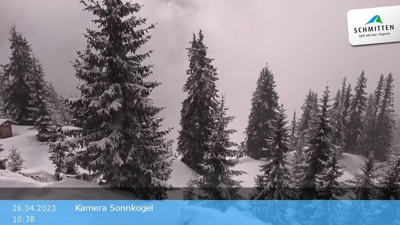 Zell am See - Schmitten - Sonnenalm - Sonnkogel