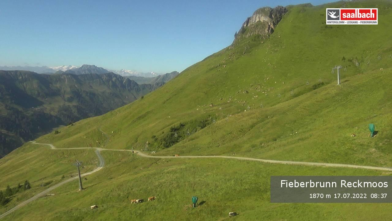 Livecam Fieberbrunn - Reckmoos Bergstation